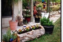 My for real garden / Garden, yard / by Christy Gilmer