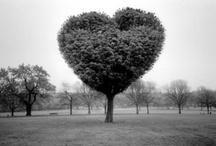 Key to My Heart / by Kerry Fugleberg Barr