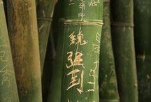 Bamboo Trees / by Sario