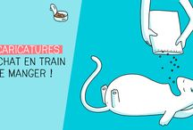 Le chat qui mange illustré par Catsass / Des dessins drôles mettant en scène les différentes personnalités des chats qui mangent