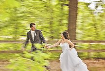 Weddings at Pamperin Park / Highlights from weddings by Casi Lea Photography.  http://casilea.photography/