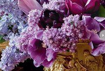 Flores amadas mías