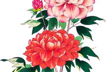 Цветы-цветочные - пионы / категория цветы