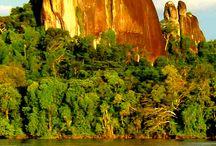 Estado Amazonas Venezuela