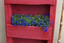 Planting flower beds