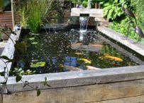 Ponds - Aberdeen