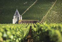 Wine Country, France