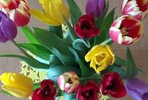 Flowers / by Fashionista Barbie Danielle Wightman-Stone