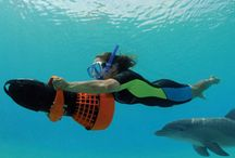 Atlantis: Paradise Island / From snorkeling among the recreated Ruins of Atlantis to interacting with dolphins and sea lions, nonstop fun runs deep at Atlantis Paradise Island in the Bahamas. #LetsVacation