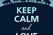 Keep Calm / I like it