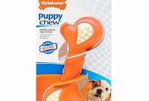 Just for Puppies / by Nylabone Products