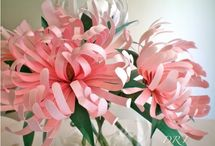 Paper flowers / by Judy Carlsson