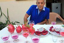 Pitaya Mersin / Meyve