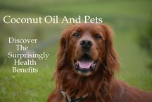 Coconut Oil And Pets