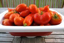 How does your garden grow??? / All things garden / by Wanda Bailey
