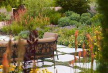 Garden and Exterior Ideas