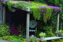 small green roof