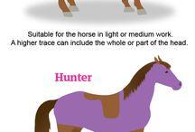 Horse stuff❤️