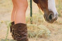 save a horse<3 / by Meaghan Behnke