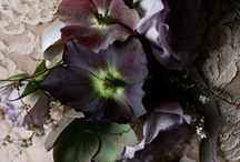 Dark & Moody / Inspiration for an adventurous couple who like a little drama and sultry romance
