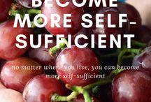 självhushållning