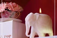 #Casapop #Smokeless #Organic #Candle #Collection