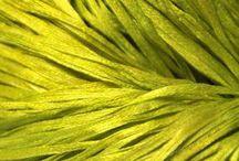 YELLOW-lime
