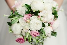 Wedding Bliss / by Mary Ciocanea