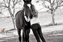 Horse / by Lisa Harrison Noffsinger