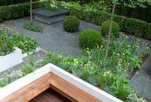 DIY: Garden / Ideas for front and back garden