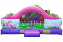 Inflatable Fun Games