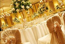 Wedding Planer / Wedding Planer dresses, decor, and good prewedding place