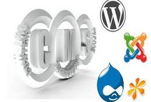 CMS Based Website Development India / CMS Based Website Development India-  Logicwebsoft Technology is -an ecommerce development and design company located in Delhi, India. We provide end to end solutions for PHP development, ASP.NET development Ecommerce development, portal development, real estate portal development, travel portal development at reasonable price around the world.