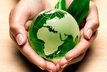 Terre & Animaux / Protection de la planète terre et des animaux.