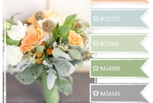 Color palettes / by Melissa Andrews