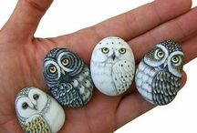 owl to