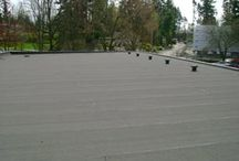 Roof Architectures or Styles / Know different types of Roof Architectures or Styles.