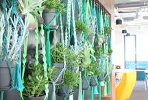 Macrame hanging baskets