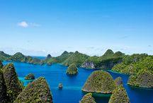 go Raja Ampat, Papua
