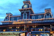 Magic Kingdom / Everything Magic Kingdom from Walt Disney World in Florida