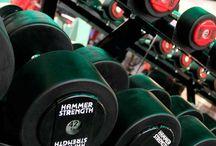 Gym Equipments India