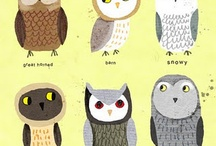 owls and the like
