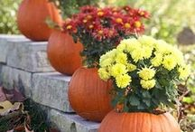 Fall my favorite happy time of year ❤️❤️ / by Melissa Romero