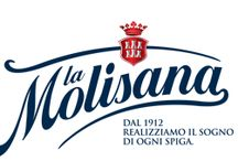 La Molisana.it / Our strategy is to fulfill the dream of each grain of wheat