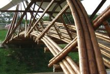 Bamboo - Bridges