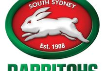South Sydney Rabbitohs / Rugby league