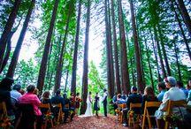 Gorgeous Weddings in Santa Cruz / Santa Cruz offers a myriad of beautiful spots for fabulous weddings!
