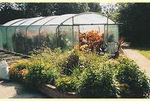 Foliekassen / Foliekas of tunnelkas, is een constructie veelal van staal bekleed met UV beschermende folie voor het kweken van planten.