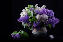 Spring Floral Candles by Kayloma! / We have a wonderful collection of Spring Scents! Our collection for Spring is Great!  All hand-poured candles,  & candle melts. Scented candles, tarts, melts, chunky melts, votive candles, and pillars.