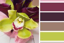 Kleurschema's algemeen / kleurschema's